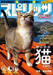 週刊ビッグコミックスピリッツ 2017年4・5合併号(2016年12月26日発売) 漫画