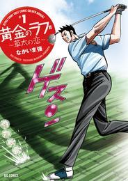 黄金のラフ2~草太の恋~(1) 漫画