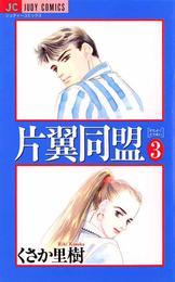 片翼同盟(3) 漫画