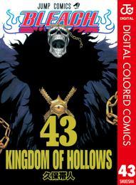 BLEACH カラー版 43 漫画