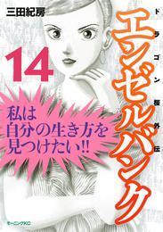 エンゼルバンク ドラゴン桜外伝(14) 漫画