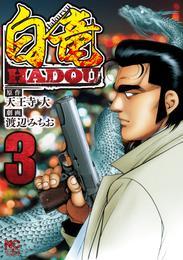 白竜HADOU 3 漫画