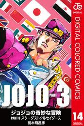 ジョジョの奇妙な冒険 第3部 カラー版 14