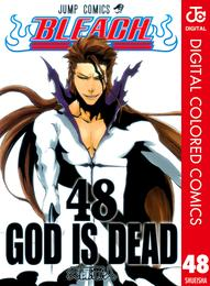 BLEACH カラー版 48 漫画