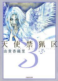 天使禁猟区 3巻 漫画
