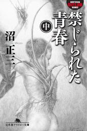 禁じられた青春(中) 漫画