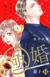 極婚~超溺愛ヤクザとケイヤク結婚!?~ 分冊版(14)