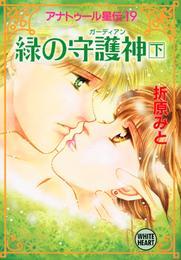 アナトゥール星伝(19) 緑の守護神(下) 漫画