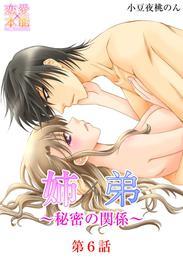 姉×弟~秘密の関係~ 6 漫画