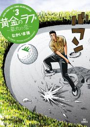 黄金のラフ2~草太の恋~(3) 漫画