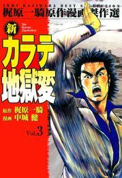 新カラテ地獄変3 漫画