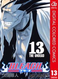 BLEACH カラー版 13 漫画