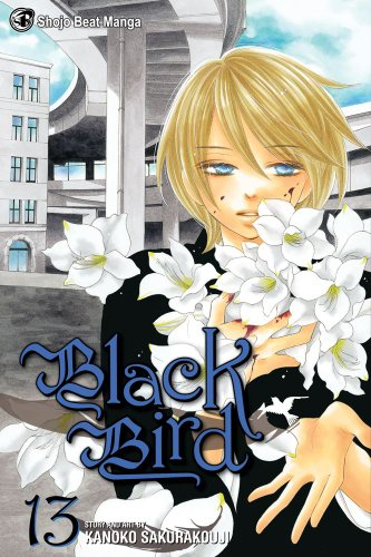 BLACK BIRD ブラックバード 英語版 13巻