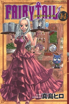 FAIRY TAIL フェアリーテイル 14巻