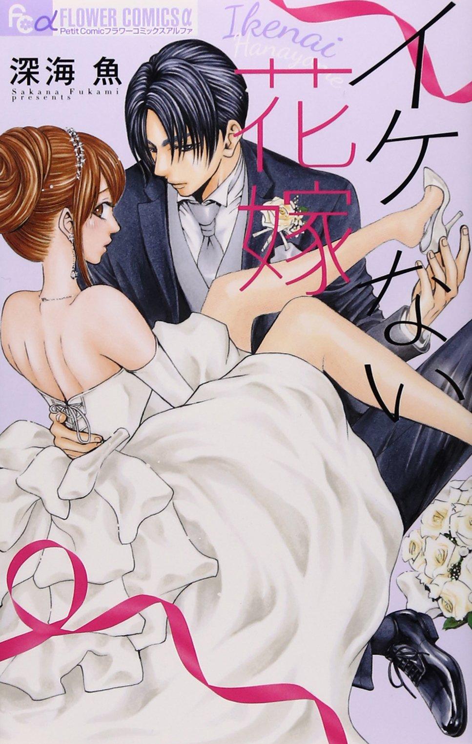 「ない嫁」シリーズセット 2巻